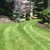 All County Lawn Care Tree & Shrub