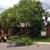 Altitude Arborist Advanced Tree Care