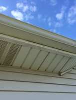Clean gutters - you decide