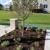 All Seasons Lawn & Landscape