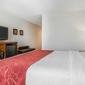 Comfort Suites Downtown Sacramento - Sacramento, CA