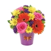 Suzanne's Florist Inc