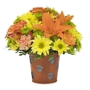 Cole Florist & Gifts
