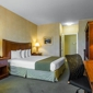 Quality Inn & Suites - Livermore, CA