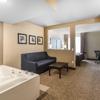 Comfort Inn & Suites Allen Park - Dearborn