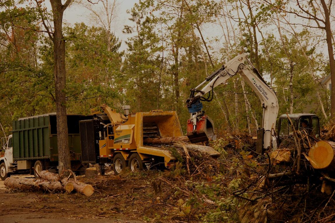 Mike S Tree Company Llc 5906 Pine Beach Rd Brainerd Mn