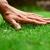 Swingle Lawn, Tree & Landscape Care