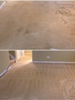 Pet Odor and Pet Stains Removal - Carpet Cleaning in Bartlett, Illinois 60103
