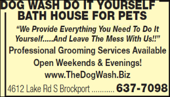 Dog wash do it yourself bath house for pets 4612 lake rd s phone book solutioingenieria Image collections