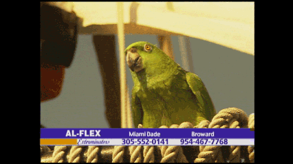 Al-Flex Exterminators - Miami, FL